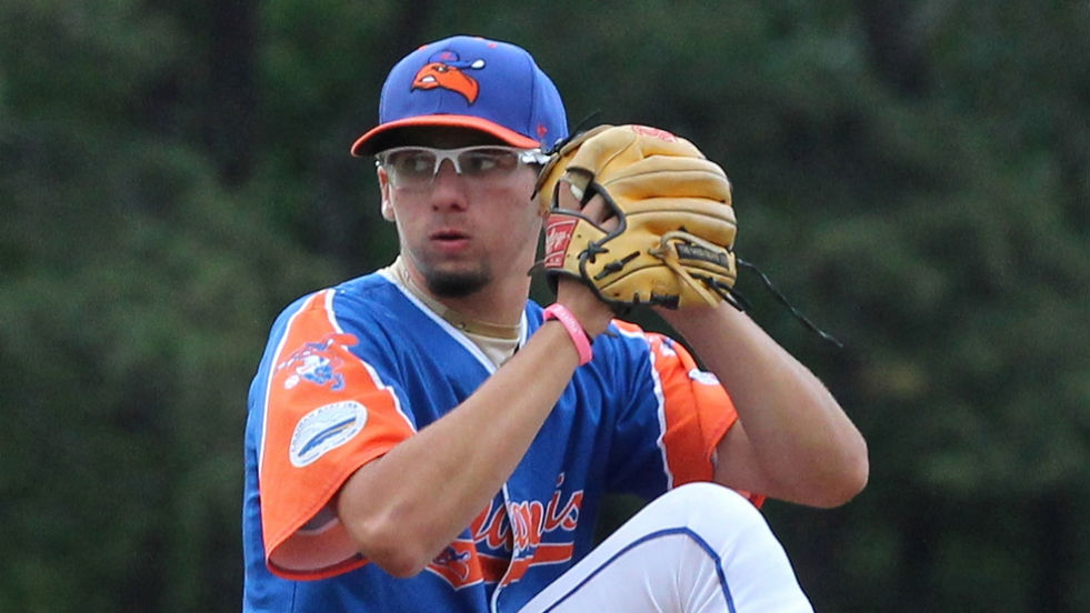 Devin Smeltzer winds up for a pitch on his way to his no-hitter of Harwich Saturday night. (Courtesy Mary K. Albis)